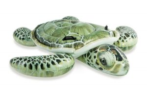 Opblaasbare schildpad - 57555NP